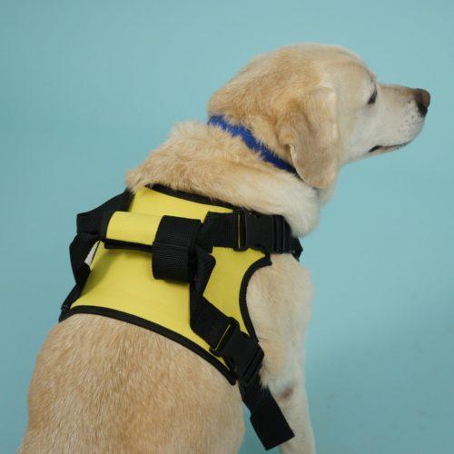 Передняя поддержка для собак
