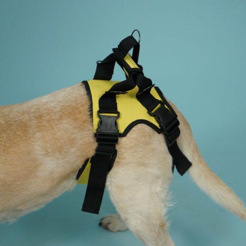 Задняя поддержка для собак