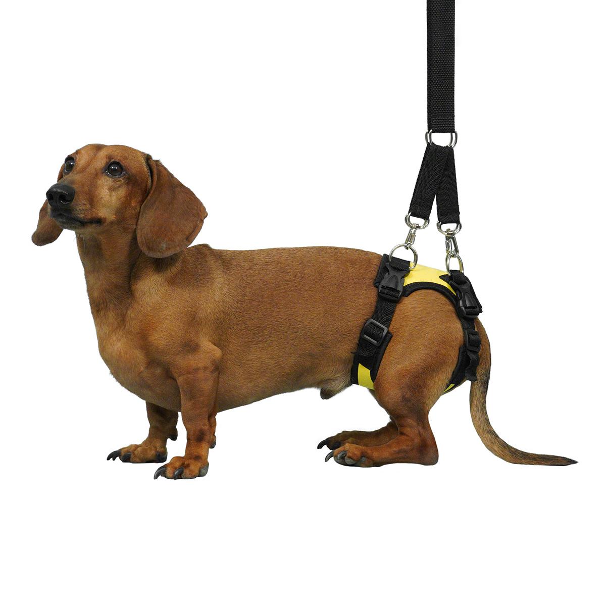 Задняя поддержка для маленьких собак