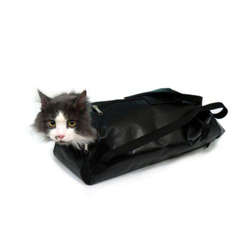 Средства реабилитации для кошек